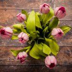 เลือกช่อดอกไม้แทนความรู้สึก ให้สีบอกความในใจเรา